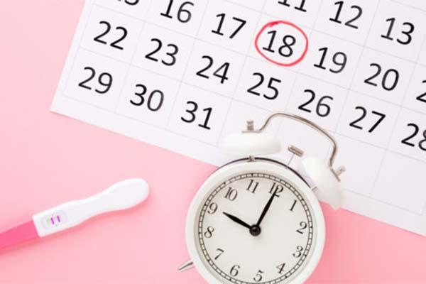calendario fertitlià del 5 mese di gravidanza